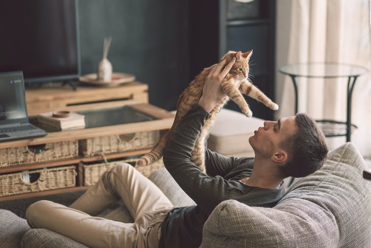 Owner playing with cat while relaxing on modern couch in living room interior.