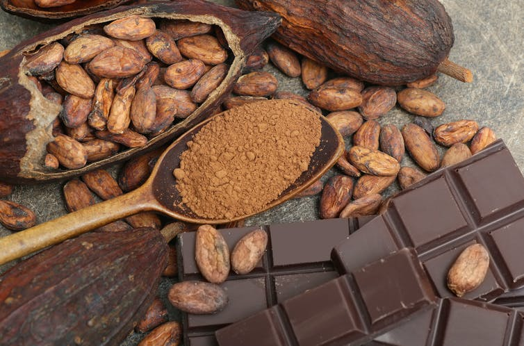 Chocolate with cacao beans
