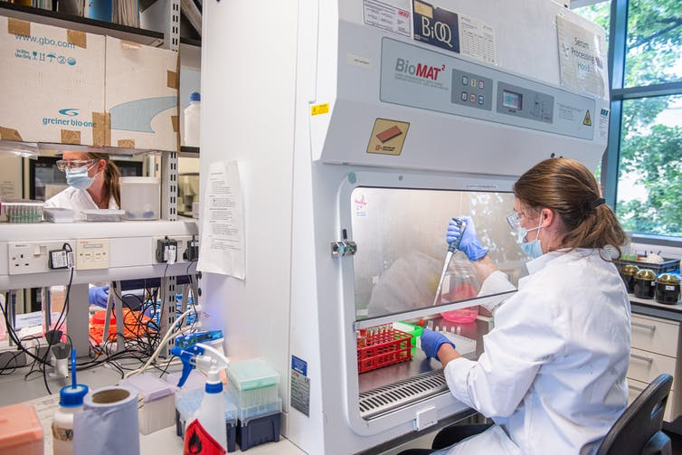 A scientist processing serum at the laboratories of Oxford University to produce a coronavirus vaccine jointly with AstraZeneca.