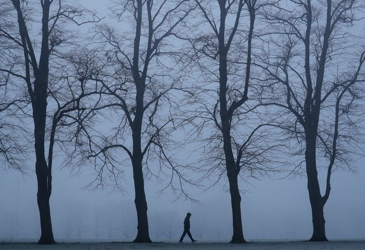 A lone figure walks through bare trees.